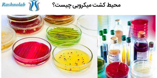 محیط کشت میکروبی چیست؟